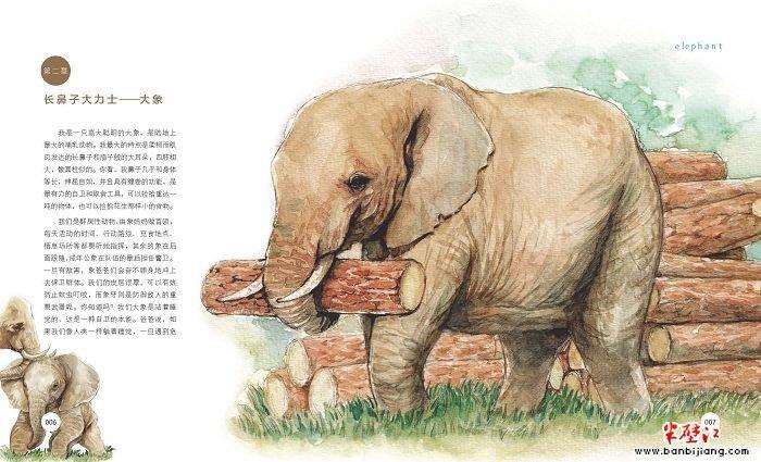 假如动物会说话:新奇迷人的动物