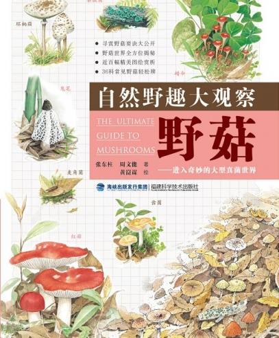 自然野趣大观察•野菇:进入奇妙的大型真菌世界