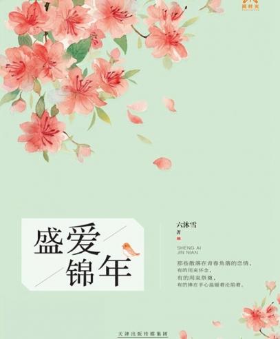 盛爱锦年: